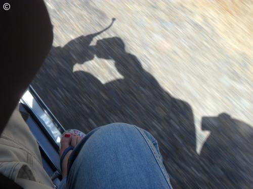 Sombra... por di@photos